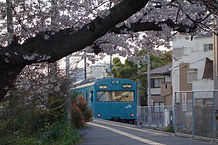 桜の和田岬駅.jpg