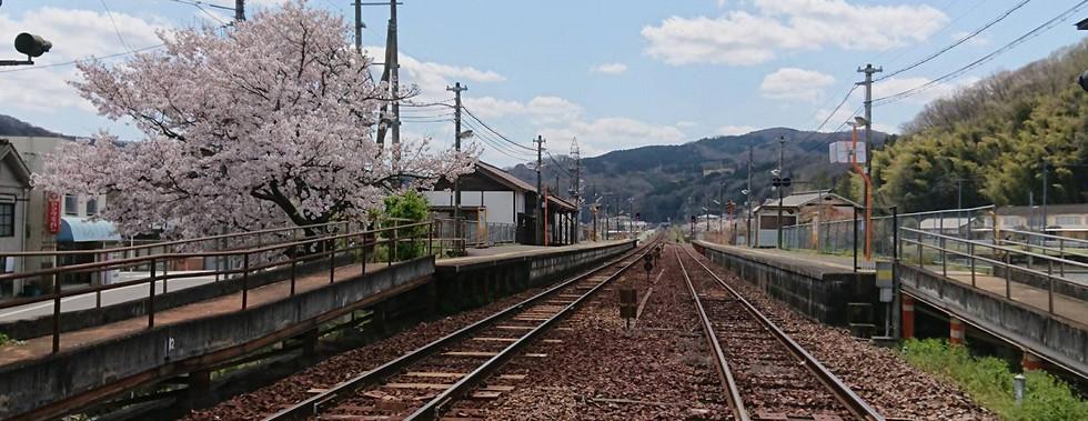 建部駅 桜1.jpg