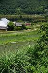 棚田と津山線