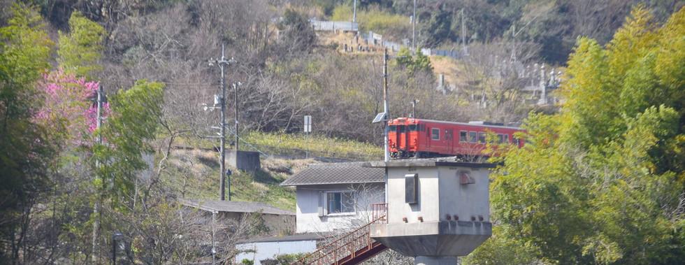 お彼岸頃の牧山駅-1 河西さん.jpg