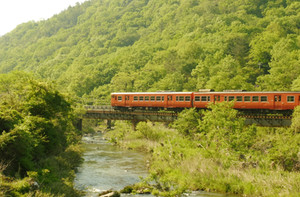 新緑の誕生寺川橋梁