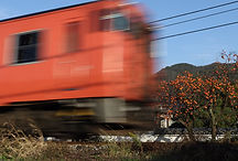 2016-11-12  柿の木と津山線.jpg