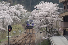 笠置駅を出る亀山行 後追い.jpg