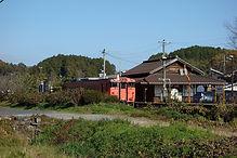誕生寺 946D  11-14.jpg