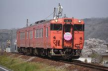 DSC_5242.jpg