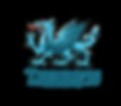 Triumph-Advisers-Blue-Transperent.png