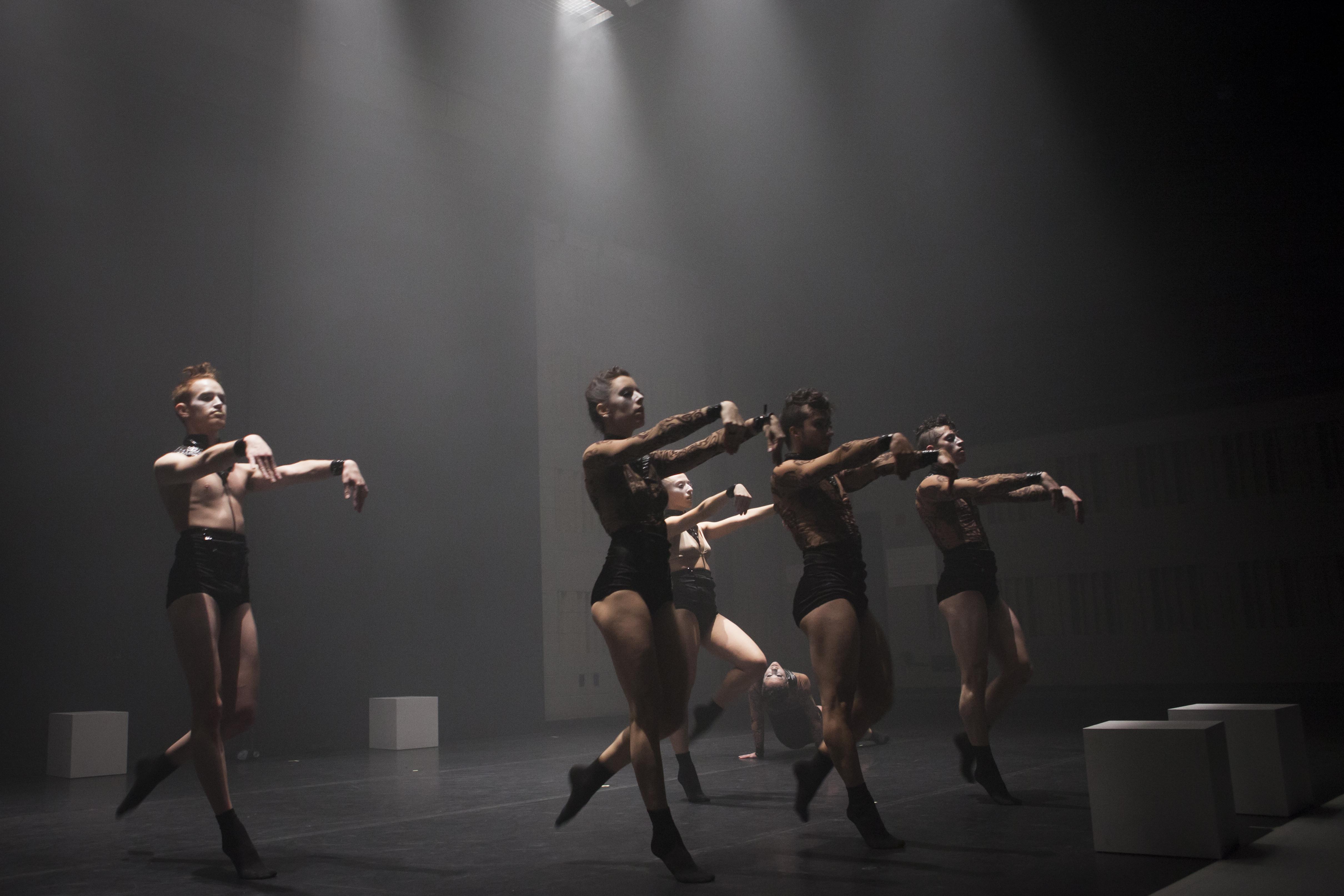 STELLA (2012)