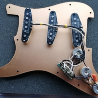 Plaque Strat Dominger. Dos
