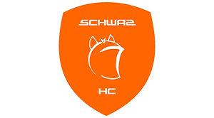 logo_hcs.jpg