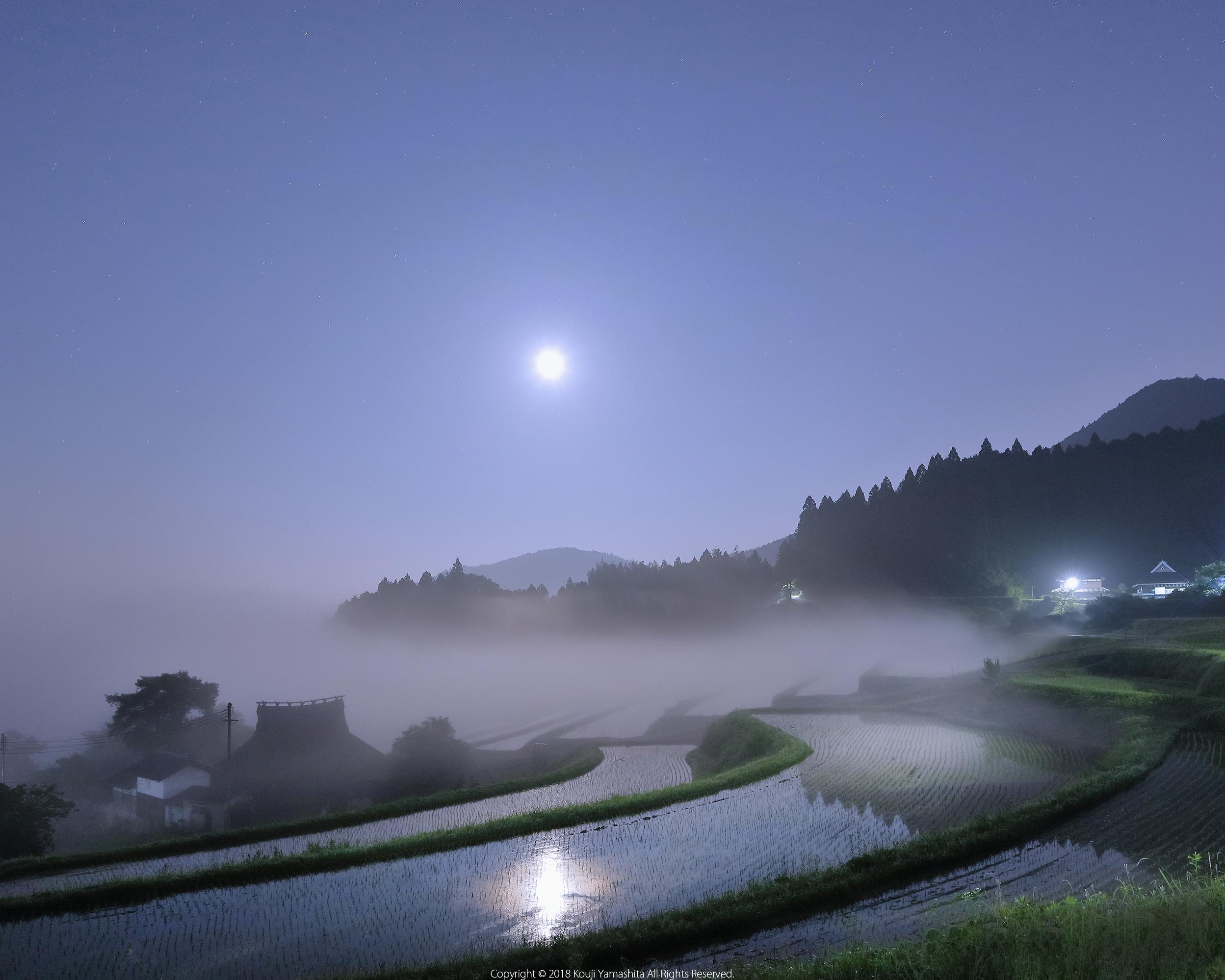 春の月光浴。