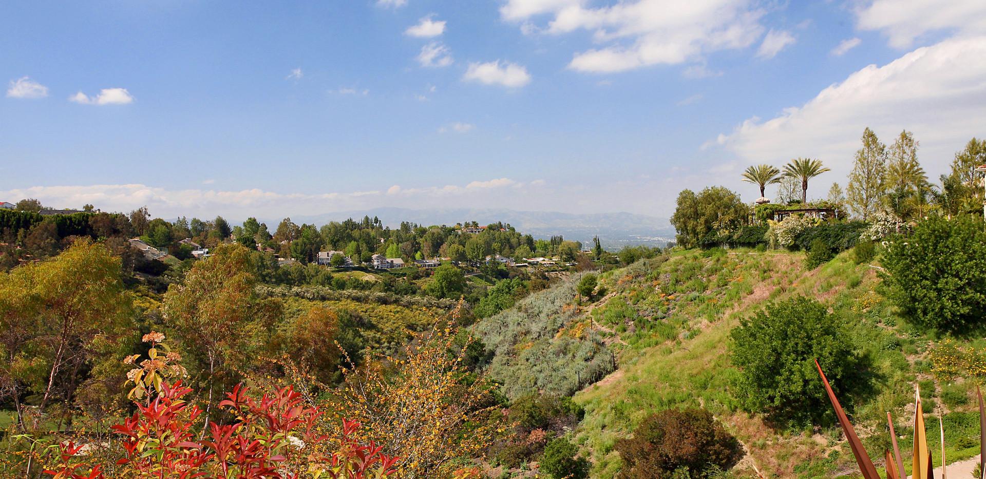 View East-10.jpg