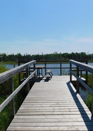Watersnake Pond Platform