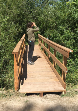 Tower Trail Bridge