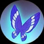 papillon stellaire.jpg