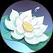 lotus stellaire.jpg