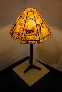 Piute Agate Lamp