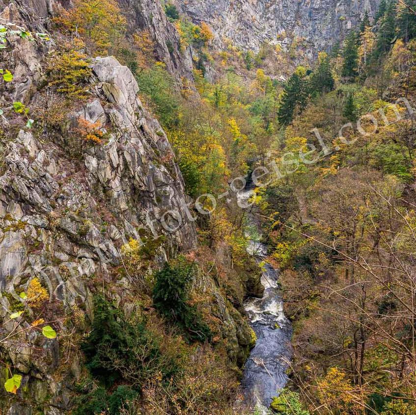 Bodetal, Harz DSC_8899