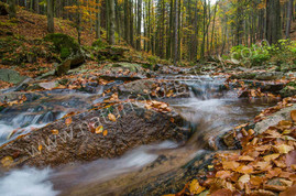 Ilsetal Harz