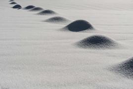 Weidepfähle unter Schnee