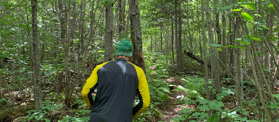 Running for the Boundary Waters - Phase 2 coming up!