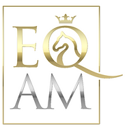 AM EQ Logo.PNG