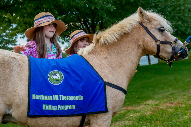 NEW: Non-Profit Partner NVTRP with Kid-Friendly Hands on Horse and Therapeutic Riding Demos