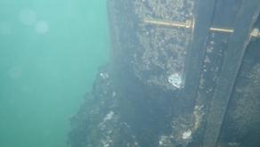 Bluescope Steel at Port Kembla - February 2018