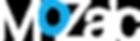 MoZaic-logo_white-blue.png