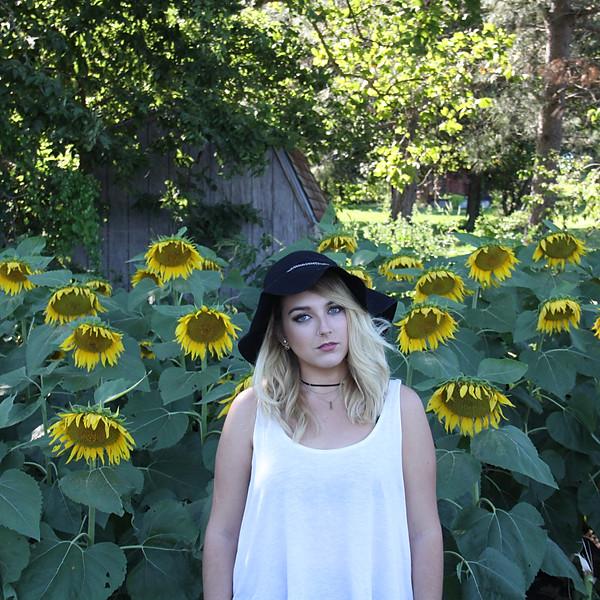 Sunflowers & Friends