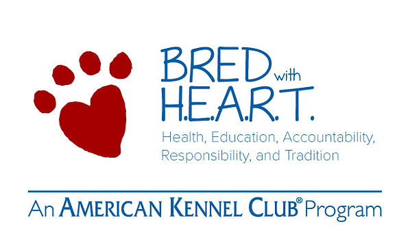 akc-bred-with-heart-porgram_orig.jpg