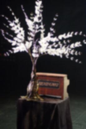 ernest-tree-1.jpg