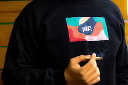 PIF Camo Crewneck.jpg