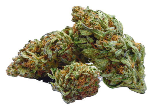 Top 10 Best Selling CBD Products