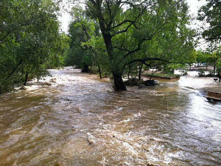 Thoughts following a flood...