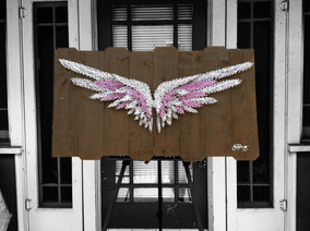 White and Purple Wings