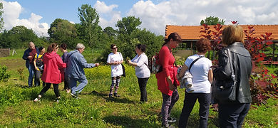 ЦСРИ за лица със зрителни увреждания в Шумен на билков ден в Надарево