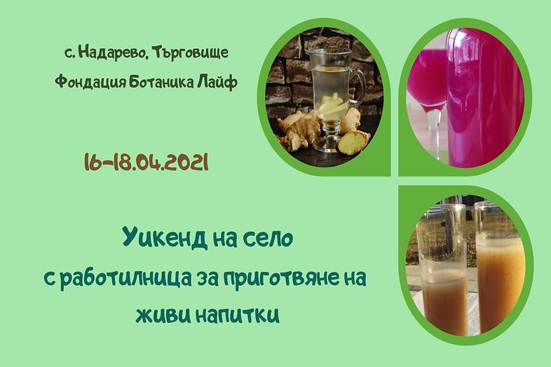 Уикенд на село с работилница за приготвяне на живи напитки 16-18 април