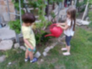 Viki i Stefan-поливат Гинкобилоба.jpg