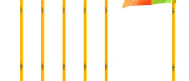 Soccer Pole Flags