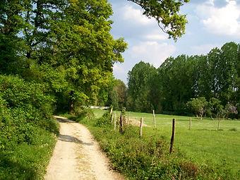 chemins communaux et ruraux.jpg