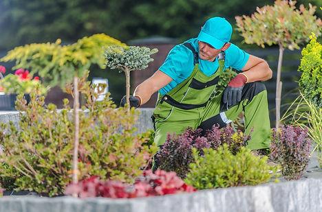 paysagistes fleurs plantes shutterstock_