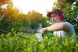 jardinier_découpe_haie_shutterstock_6443