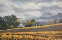 Autumn vines and mist; Killara