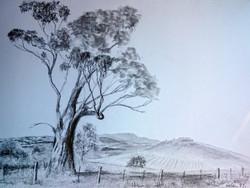 Helen Mann Landscape
