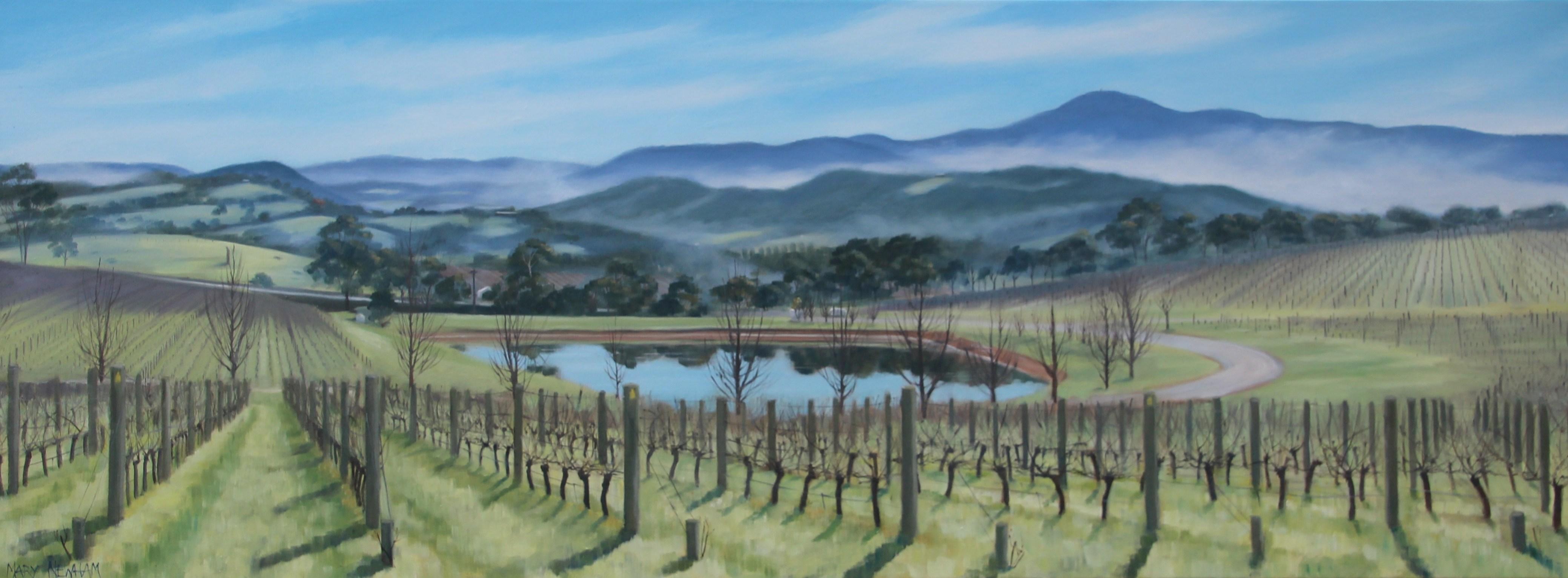 Morning mist Oakridge Estate