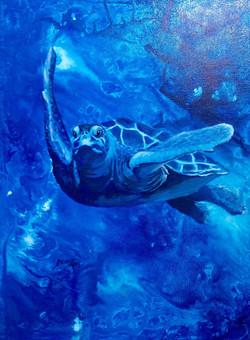 Timmy Turtle Inks&Acrykics_4jpeg.