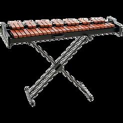 practice marimba image.png