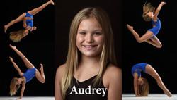 Audreyweb