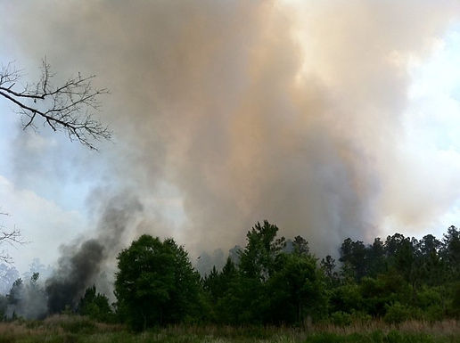 LARGE WOODS FIRE