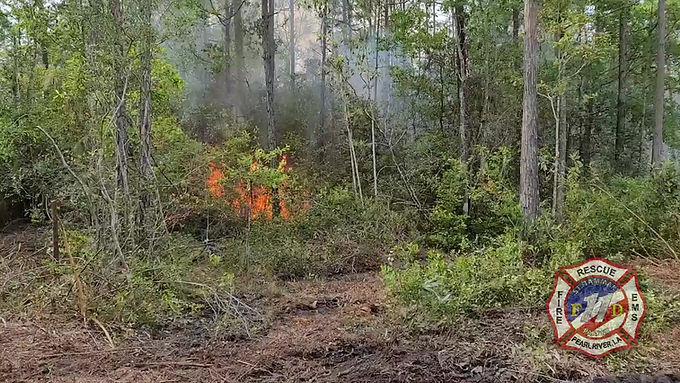 WOODS FIRE